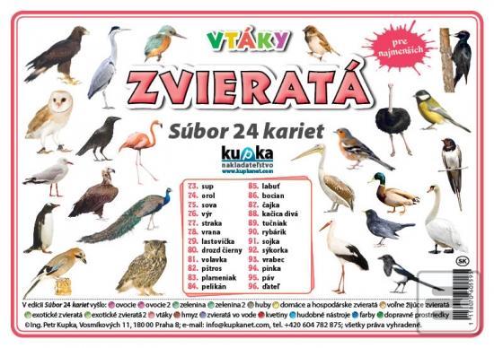 Vtáky Foto